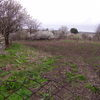 Bulgarian house large plot in bulgaria