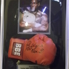 frank bruno former wbc heavyweight champion signed boxing glove in a custom made protective case