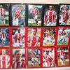 "STOKE CITY FULL TEAM FRAMED AUTOGRAPHED ""BRITTANIA"" STRIP"