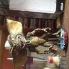Stripe head knocker (wobble Head)