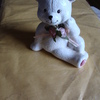 a nice teddy Ornament