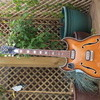 1964 VOX Challenger Arch Top Guitar