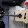NEW Gordon Guitars luthier made SBR45ST Acoustic Guitar
