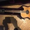 Guild 12 String 1984