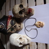 my skull collection & skull pendant on leather neck chain
