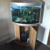 corner Curved aquarium fish tank
