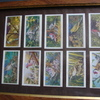 CIGARETTE CARDS in frame birds