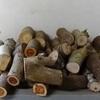 Woodturning Blanks (Green)