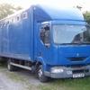 7.5t Renault horse box