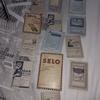 Antique photo negatives