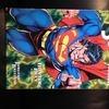 Superman / Doomsday book 2