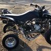 Quadzilla 320cc