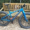 Bergamont deer hunter 6.0 fat bike