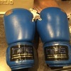 Boxing gloves job lot
