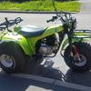 Kawasaki 250 Trike, road legal