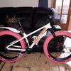 on one Fat Bike
