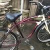 Apollo custom cycle