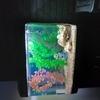 Aqua one ar 620 aquarium