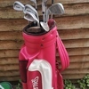 Golf bag and full set of clubs