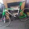 Terry Dolan road bike full carbon