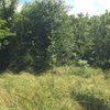 2 Plots of land & company -Bulgaria