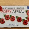 2011 - 2021 Poppy pin badge set